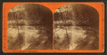 Falls of the Munissing, from Robert N. Dennis collection of stereoscopic views.png