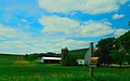 Farm on Timber Lane - panoramio (1).jpg