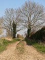 Farm track - geograph.org.uk - 383884.jpg