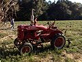Farmall Tractor in field.JPG