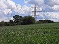 Farmland and pylon, Wolverton - geograph.org.uk - 1775470.jpg