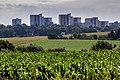 Feld zwischen Aprath und Wuppertal 20160710 19.jpg