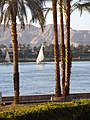 Felucca on the Nile - panoramio.jpg