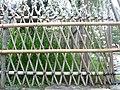 Fence in Japan 03.jpg