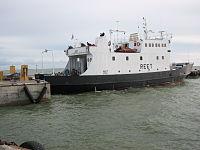 Ferry Reet.jpg