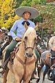 Fiestas Patrias Parade, South Park, Seattle, 2015 - 301 - the horses (21407022169).jpg