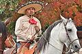 Fiestas Patrias Parade, South Park, Seattle, 2015 - 314 - the horses (21567233896).jpg