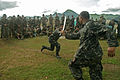 Flickr - DVIDSHUB - Knife Fighting.jpg