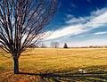 Flickr - Nicholas T - Louise W. Moore Park (1).jpg