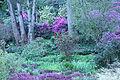 Flickr - brewbooks - Streissguth Gardens - Seattle.jpg