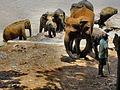 Flickr - ronsaunders47 - ELEPHANTS BATHTIME. SRI LANKA. 1.jpg