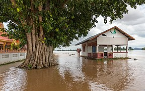 Flooded building and tree trunk in the muddy water of the Mekong in Si Phan Don, Laos, September 2019.jpg
