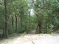 Fonyód, 8640 Hungary - panoramio (40).jpg