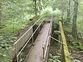 Footbridge above the fall - geograph.org.uk - 479331.jpg