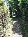 Footpath beside railway line - geograph.org.uk - 1381292.jpg