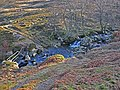 Ford on the Allt Shuas in Fin Glen - geograph.org.uk - 679815.jpg