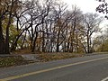 Forest Park, Queens, NY, USA - panoramio (6).jpg
