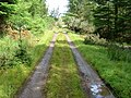 Forest Track in Gleann Udalain - geograph.org.uk - 512183.jpg