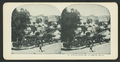 Forming bread line at Jefferson Square, from Robert N. Dennis collection of stereoscopic views 4.png