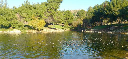 Frank-Bonelli-Regional-Park-4