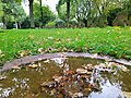 Friedhof Höchst Oktober 2019 017.jpg