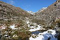 GERÊS NATIONAL PARK PORTUGAL VIDOAL MEADOW.jpg
