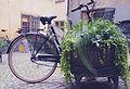 Gamla Stan Bike (15741472309).jpg