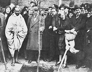 Gandhi planting a tree