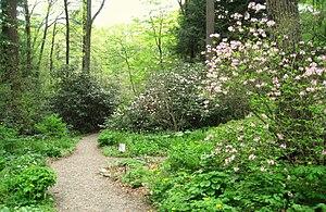 Garden in the Woods - Garden in the Woods