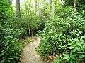 Garden in the Woods - IMG 2469.JPG