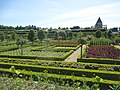 Gardens of the Château de Villandry (4).jpg