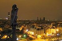Gargouille surveillant la ville lumière.jpg