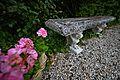 Garten - Flickr - Peter.Samow (3).jpg