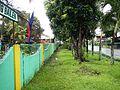 GeneralEmilioAguinaldo,Bixa orellanajf9216 07.JPG
