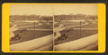 General view of the Public Garden, from Robert N. Dennis collection of stereoscopic views 2.png