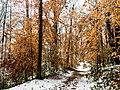 Georgia snow IMG 4645 (38231302494).jpg