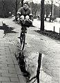 Geschonken in 1986 door United Photos de Boer bv. Identificatienummer 54-016697.JPG