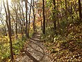 Gfp-iowa-effigy-mounds-hiking-trail.jpg