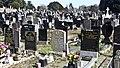 Glasnevin Cemetery (4512374919).jpg