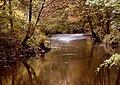 Glazert River - geograph.org.uk - 1569710.jpg
