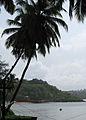 Goa - Scenes (11).JPG