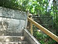 Gold Head Branch SP ravine path06.jpg