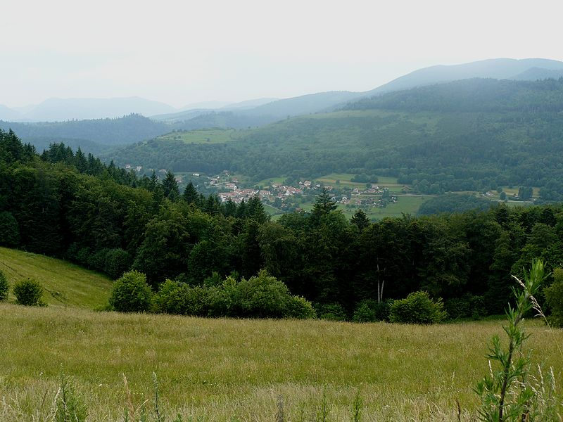 File:Goldbach-Altenbach 013.JPG