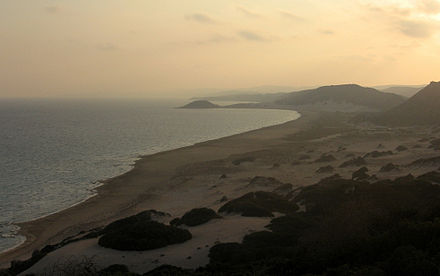 Golden Beach at Karpaz Peninsula, at sunset. The sandy beaches are often used as habitats for green turtles.