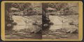 Gorge cascade, Enfield Ravine, by E. & H.T. Anthony (Firm).png