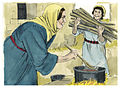 Gospel of Luke Chapter 2-21 (Bible Illustrations by Sweet Media).jpg