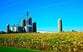Grain Silos - panoramio (3).jpg