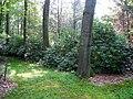 Graver Arboretum - 334.jpg
