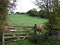 Grazing Land, near Stockton Brook, Staffordshire - geograph.org.uk - 598117.jpg