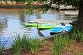 Great Blue Heron, Woodlands Waterway.jpg